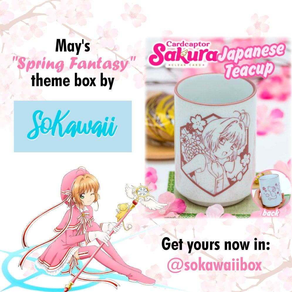 Caja de suscripción mensual SoKawaiiBox